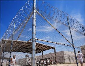 Prison barbwire 01